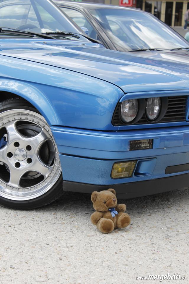 Ursulet BMW (BWA 2013)