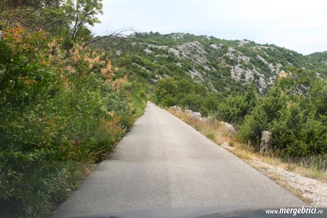 Drum ingust Muntenegru