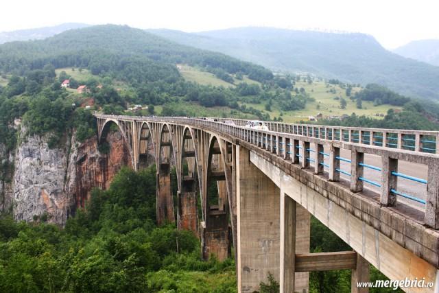 Pod canion Tara - Muntenegru